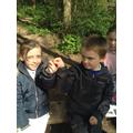 Sharing their leaf skeleton