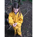 Year 1 - discovering the fauna in forest school