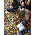 Using prior knowledge of knots to help them