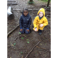 Year 3 - making their favourite book cover from the things found on the forest floor