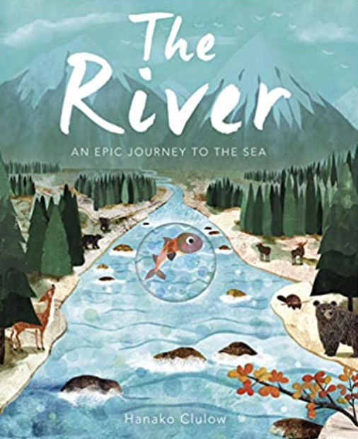Follow a little fish on her exciting journey downriver into the unknown!