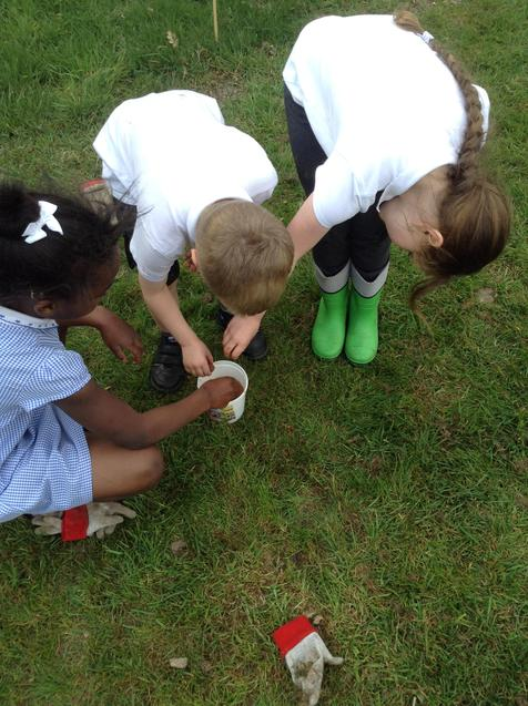 Soaking and launching seed bombs