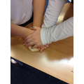 Making fossils in Science