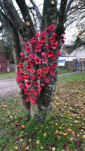 Installation of poppies made by all the classes
