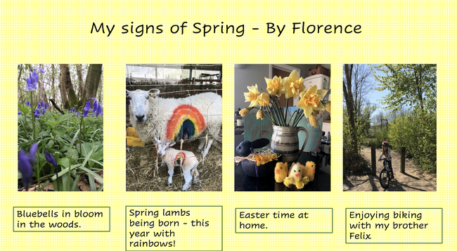 Florence's beautiful signs of Spring!