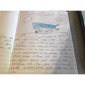 Poppy's whale story