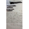 Diego's fab  letter