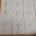 Year 2 Dandelion Pictures