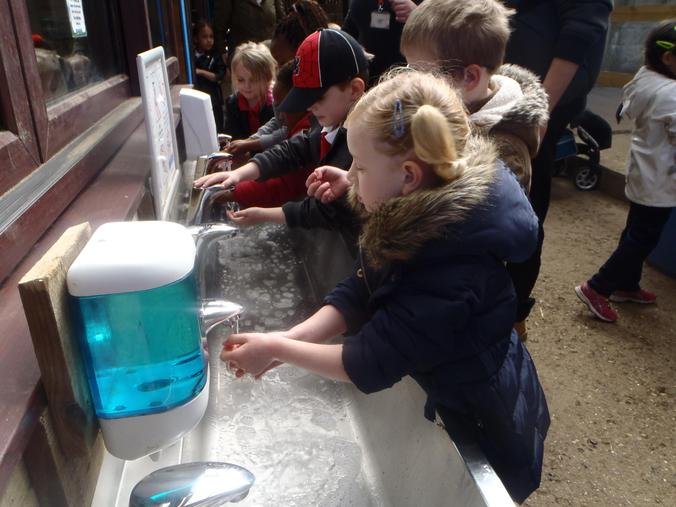 We washed our hands after touching the animals.