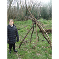 Shelters using free standing branches