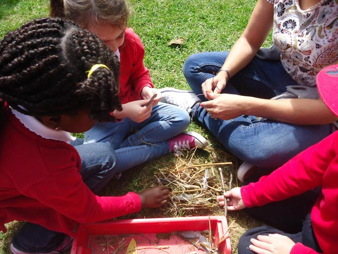 We used resources collected to make birds nests.