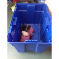 This is the lunch box trolley where children put their packed lunches.