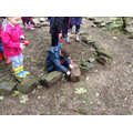 Searching for mini beasts.
