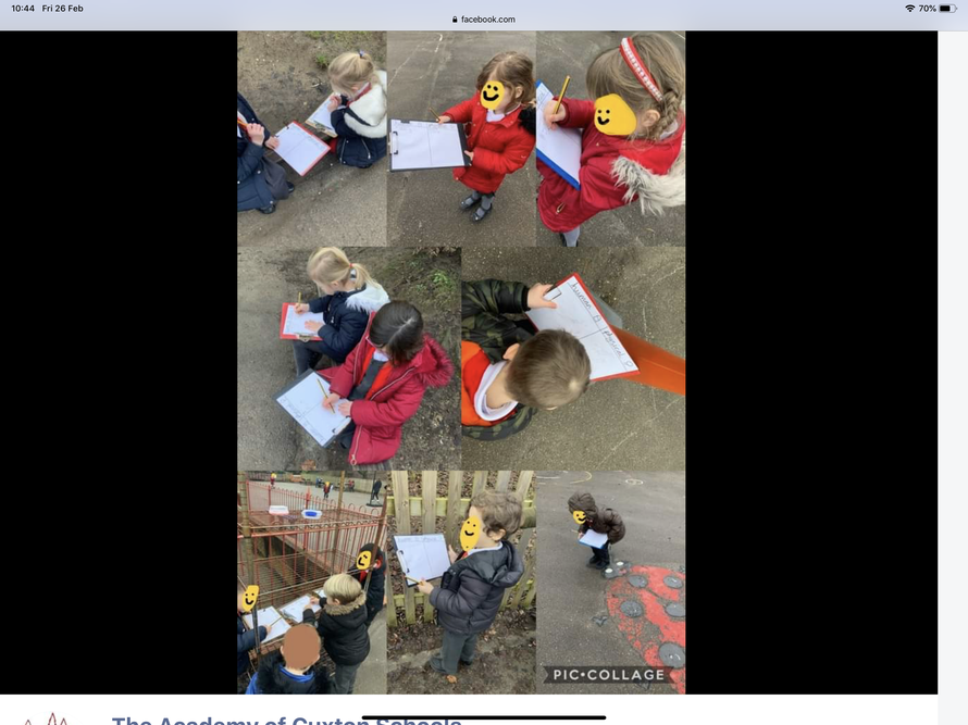 Year 1 learning about human and physical features.