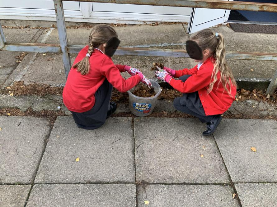 Year 4 environment day
