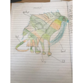 Freddie's dragon