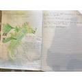 Josh's dragon