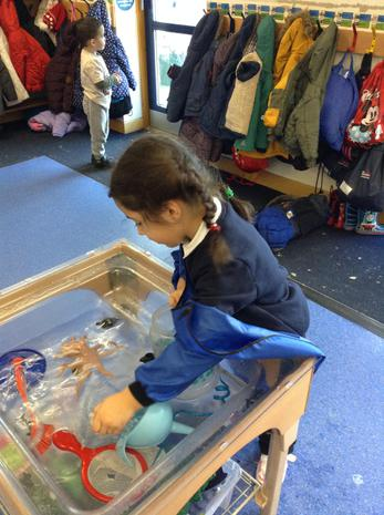 We are learning to use different sized containers to fill and empty
