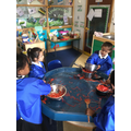 Green class have been enjoying some messy sensory play with spaghetti.JPG