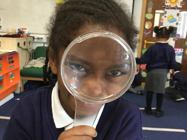 Magnifying glasses helped us to see dragonflies and insects up close