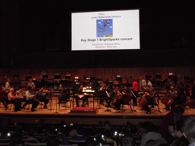 What instruments can you see in the orchestra.JPG