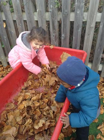 We have been learning about what happens in Autumn and why the leaves fall off and become crunchy
