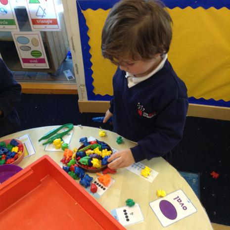 We are learning to sort different objects into groups