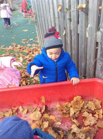 We have been learning about the texture of autumn leaves that have fallen in the playground