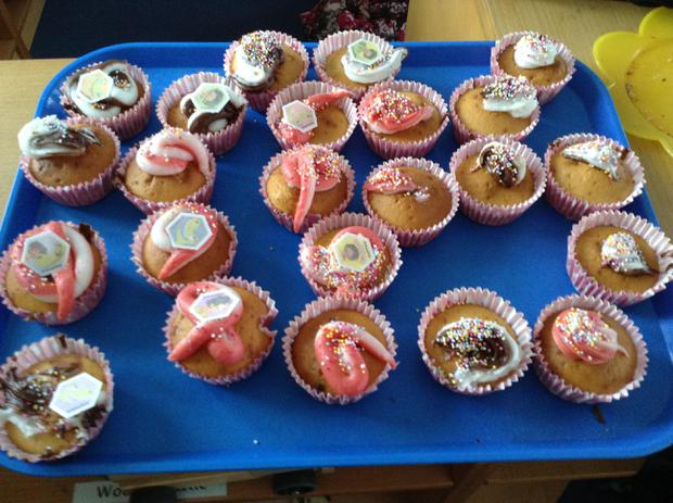 We have been baking and decorating our own cakes