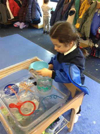 We have been learning about measuring in the water area