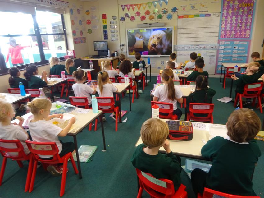 After maths we have a little run around before having our lunch in our classroom.