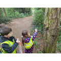Forest Schools map making