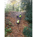 Forest schools climbing