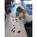 Exploring dominoes