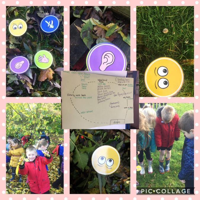 We were using our senses to explore the outside environment a, write interesting sentences