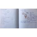 Anaya - English/Maths