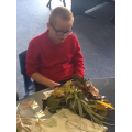 Look at all the different leaves we collected!