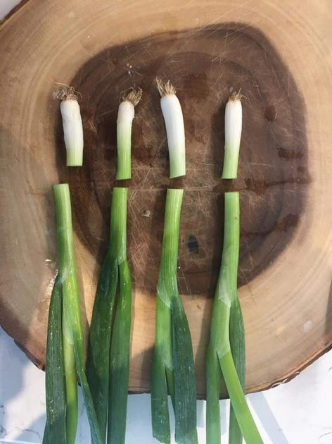 Miss Tinley chopped spring onions