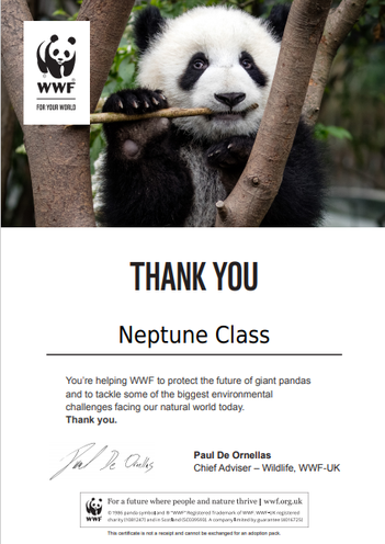 As part of our helping the world topic, Neptune class have adopted a Giant Panda!