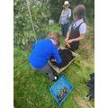 Great work by gardening club