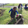 Caring for our plants and flowers