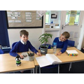 Collaborative Learning in Y4