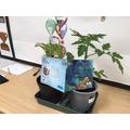 Teresa the Tomato Plant enjoys Guided Reading