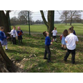 Habitats in the school grounds