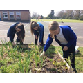 Digging and weeding in the school veg plot