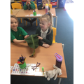 Exploring and describing a banana leaf