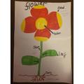 Scarlett's flower