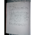 Excellent diary entry!