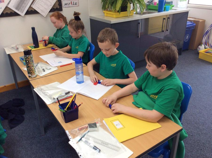 Chestnut class exploring magnetism