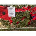 Remembrance Day - Poppies made by reception